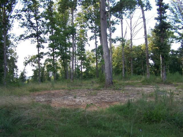 Mathis Cemetery Rd, Stewart, TN 37175