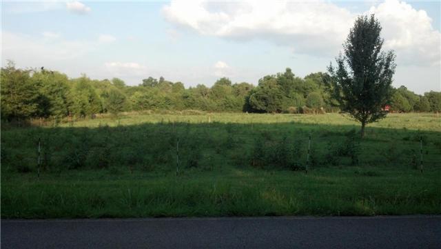 Miller Rd, Christiana, TN 37037