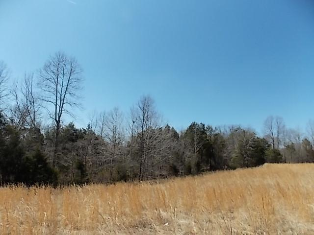 Big Springs Rd, Charlotte, TN 37036