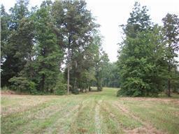 Real Estate for Sale, ListingId: 32226412, Bradyville,TN37026