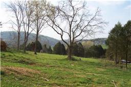 Real Estate for Sale, ListingId: 32222777, Brush Creek,TN38547