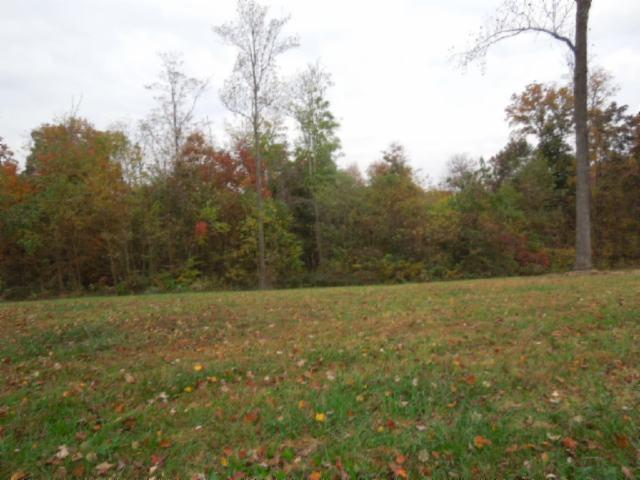Real Estate for Sale, ListingId: 32216266, Gainesboro,TN38562