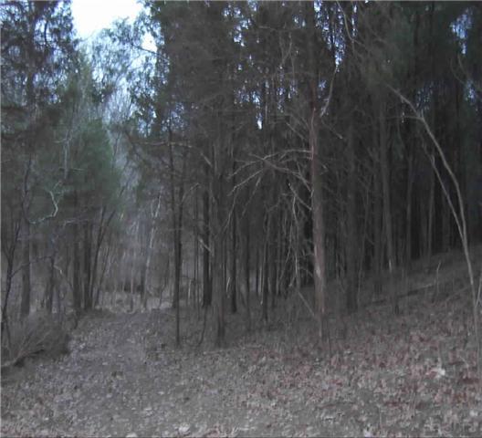 12 Puryears Bend Rd, Hartsville, TN 37074