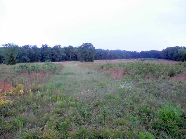 Real Estate for Sale, ListingId: 32213046, Murfreesboro,TN37127