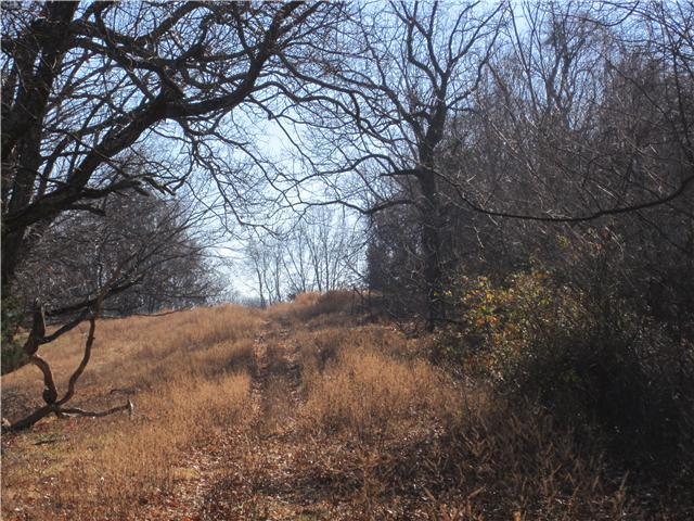 Burks Hollow Rd, Christiana, TN 37037