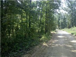 Real Estate for Sale, ListingId: 32215525, Centerville,TN37033