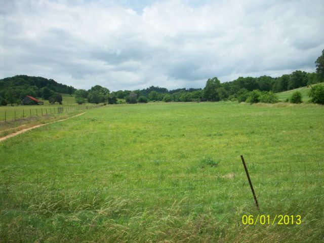 Real Estate for Sale, ListingId: 32219947, Hampshire,TN38461