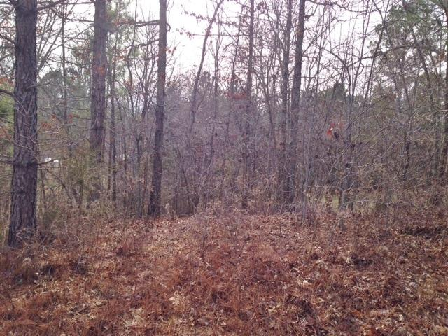 Land for Sale, ListingId:32220775, location: 4 Star Pt Smithville 37166