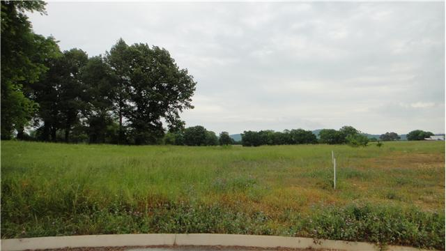 0.51 acres by Decherd, Tennessee for sale