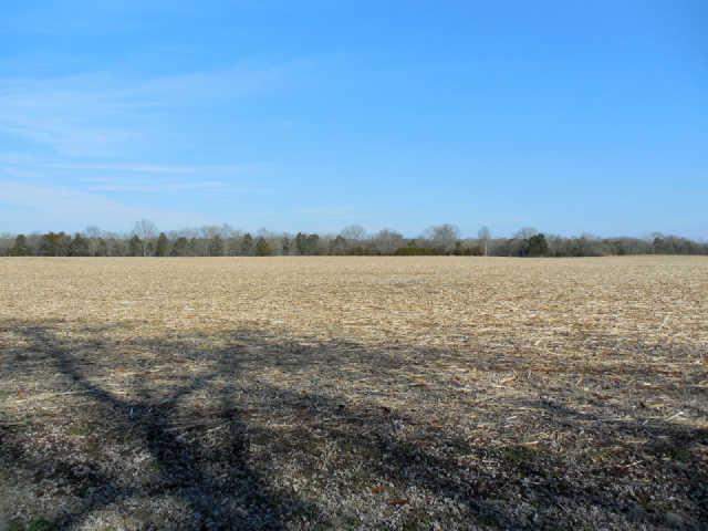 Real Estate for Sale, ListingId: 32212722, Murfreesboro,TN37129