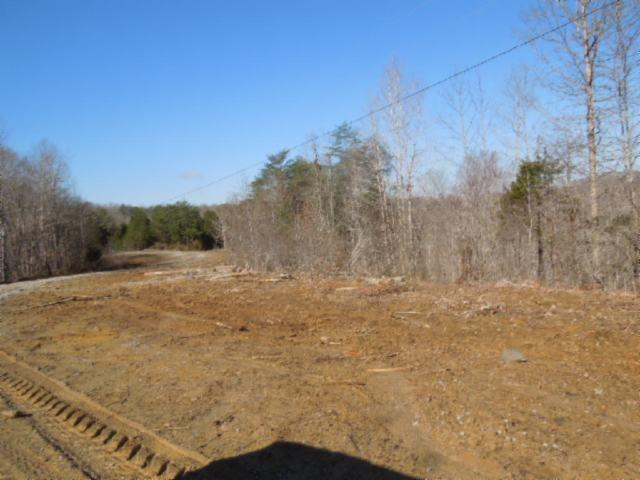 Real Estate for Sale, ListingId: 32280499, Burkesville,KY42717