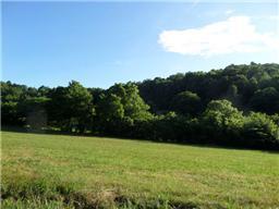 Real Estate for Sale, ListingId: 32883296, Pleasant Shade,TN37145