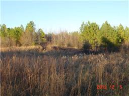 Real Estate for Sale, ListingId: 32959815, McMinnville,TN37110