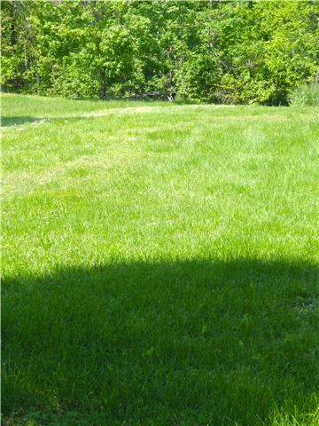 Land for Sale, ListingId:33103759, location: 352 Adcock Cemetery Rd Smithville 37166