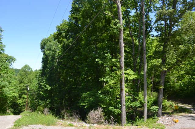 Real Estate for Sale, ListingId: 33208173, Smithville,TN37166