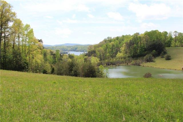 55 acres Albany, KY