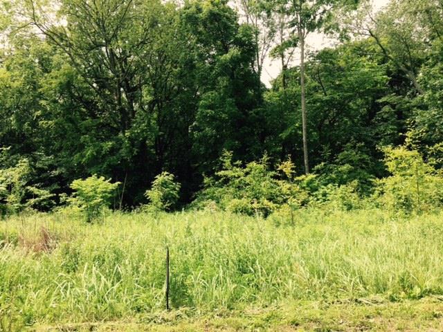 4433 Taylor Rd, Springfield, TN 37172