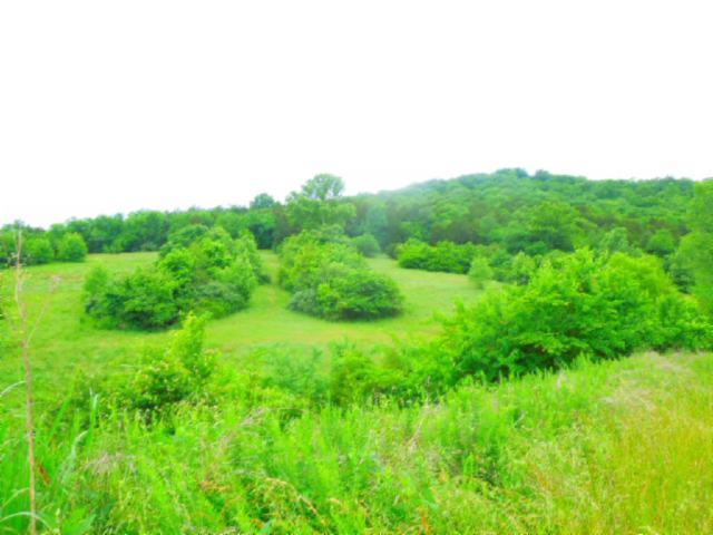 Real Estate for Sale, ListingId: 33643421, Gainesboro,TN38562