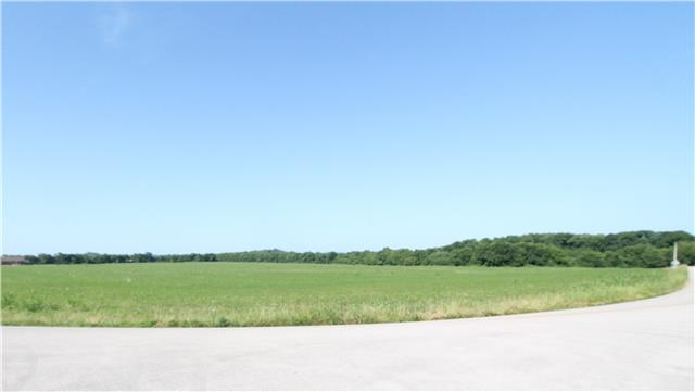 Real Estate for Sale, ListingId: 33845254, Mt Pleasant,TN38474