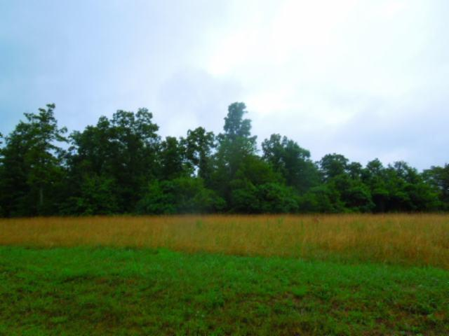 Image of Acreage for Sale near Spencer, Tennessee, in Van Buren county: 4.22 acres
