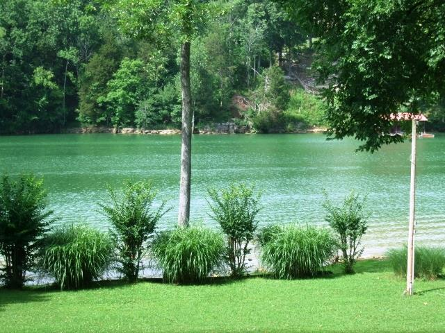 201 River View Rd, Doyle, TN 38559