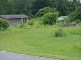 161 Pine Grove Rd, Smithville, TN 37166