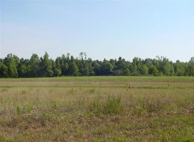 Image of Acreage for Sale near Summertown, Tennessee, in Lawrence County: 24.67 acres