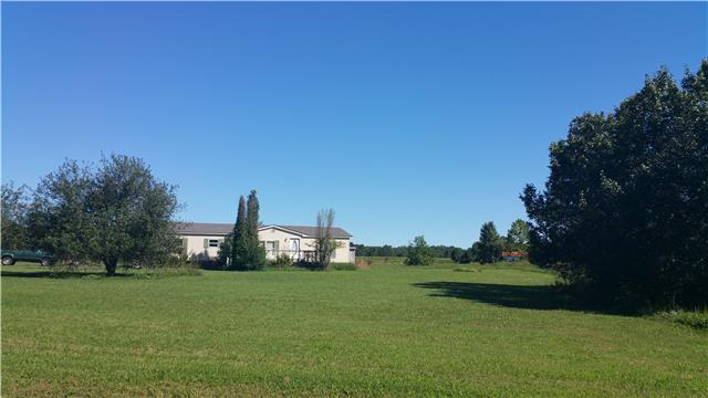 163 Hollaway St, Summertown, TN 38483
