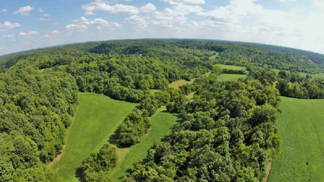 Real Estate for Sale, ListingId: 35244141, Cornersville,TN37047