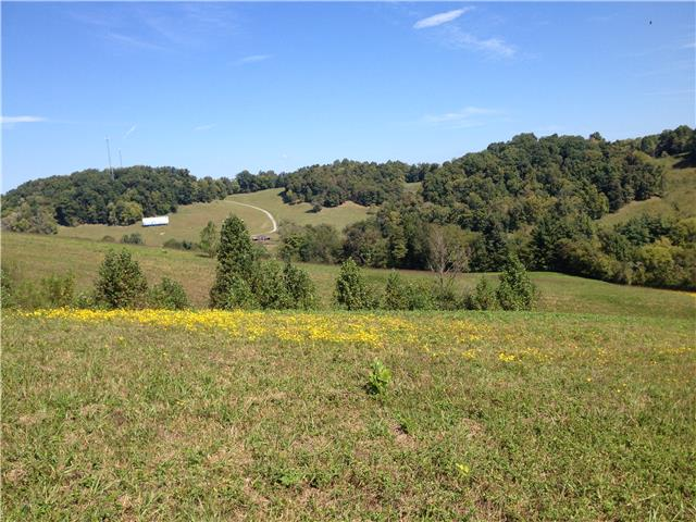 0 Crews Hollow Rd Beechgrove, TN 37018