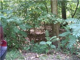 0 Beechwood Cir lot 6 Manchester, TN 37355
