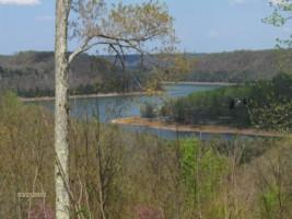 Real Estate for Sale, ListingId: 36015484, Smithville,TN37166