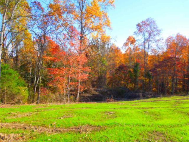 Real Estate for Sale, ListingId: 36033479, Gainesboro,TN38562
