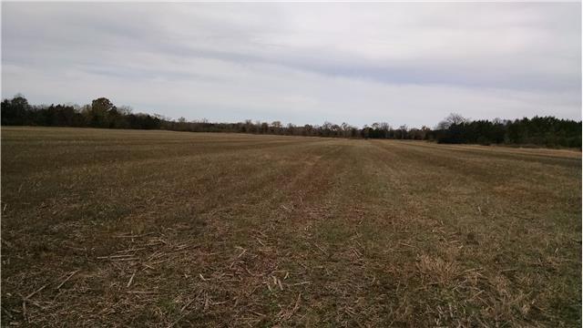 14755 Highway 99, Eagleville, TN 37060