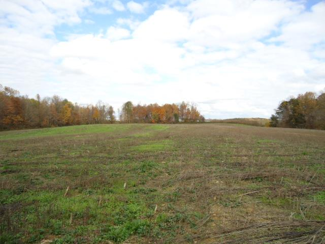 Image of Acreage for Sale near Red Boiling Springs, Tennessee, in Clay County: 627.5 acres