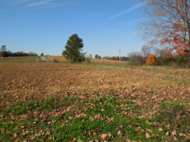 Image of Acreage for Sale near Lafayette, Tennessee, in Macon County: 68.3 acres