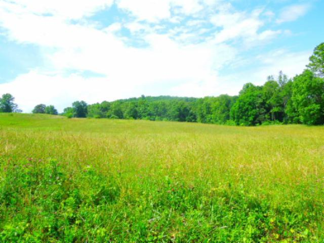 Image of Acreage for Sale near Byrdstown, Tennessee, in Pickett County: 8.37 acres