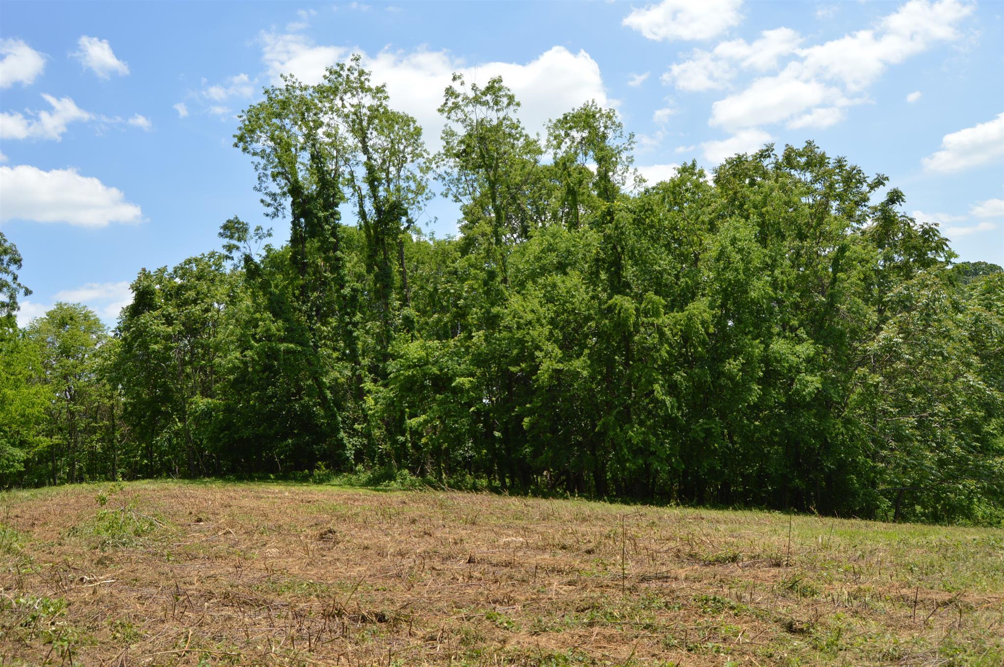 1390 Poor House Rd, Lewisburg, TN 37091