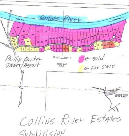 21 Collins River Drive Rock Island, TN 38581