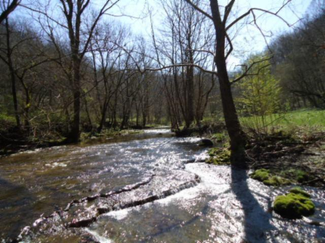 Image of Acreage for Sale near Bloomington Springs, Tennessee, in Putnam County: 50 acres