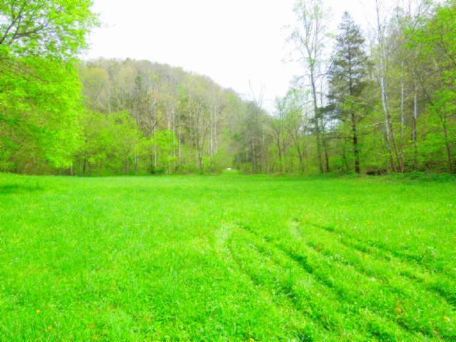 Image of Acreage for Sale near Celina, Tennessee, in Clay County: 52.75 acres