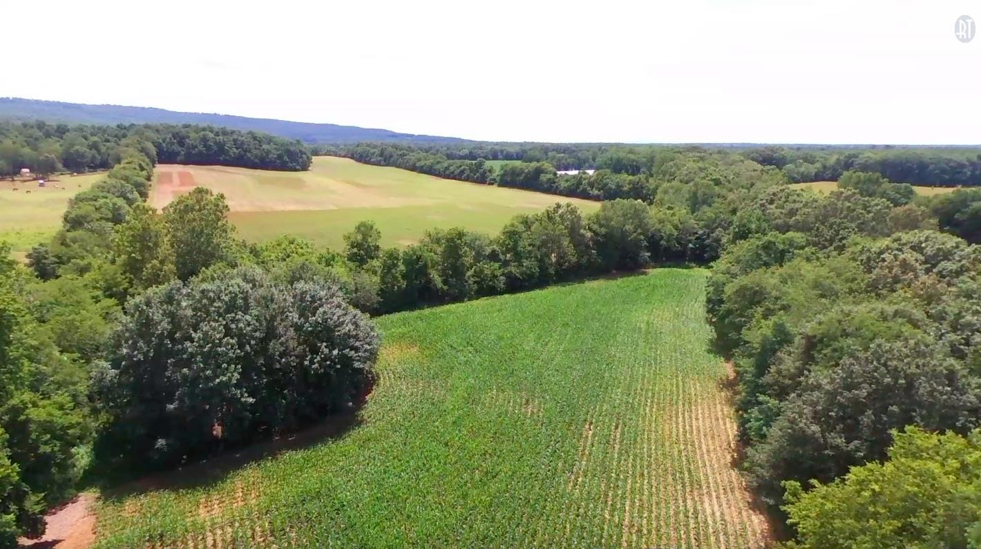 Image of Acreage for Sale near Elora, Tennessee, in Lincoln County: 52.5 acres