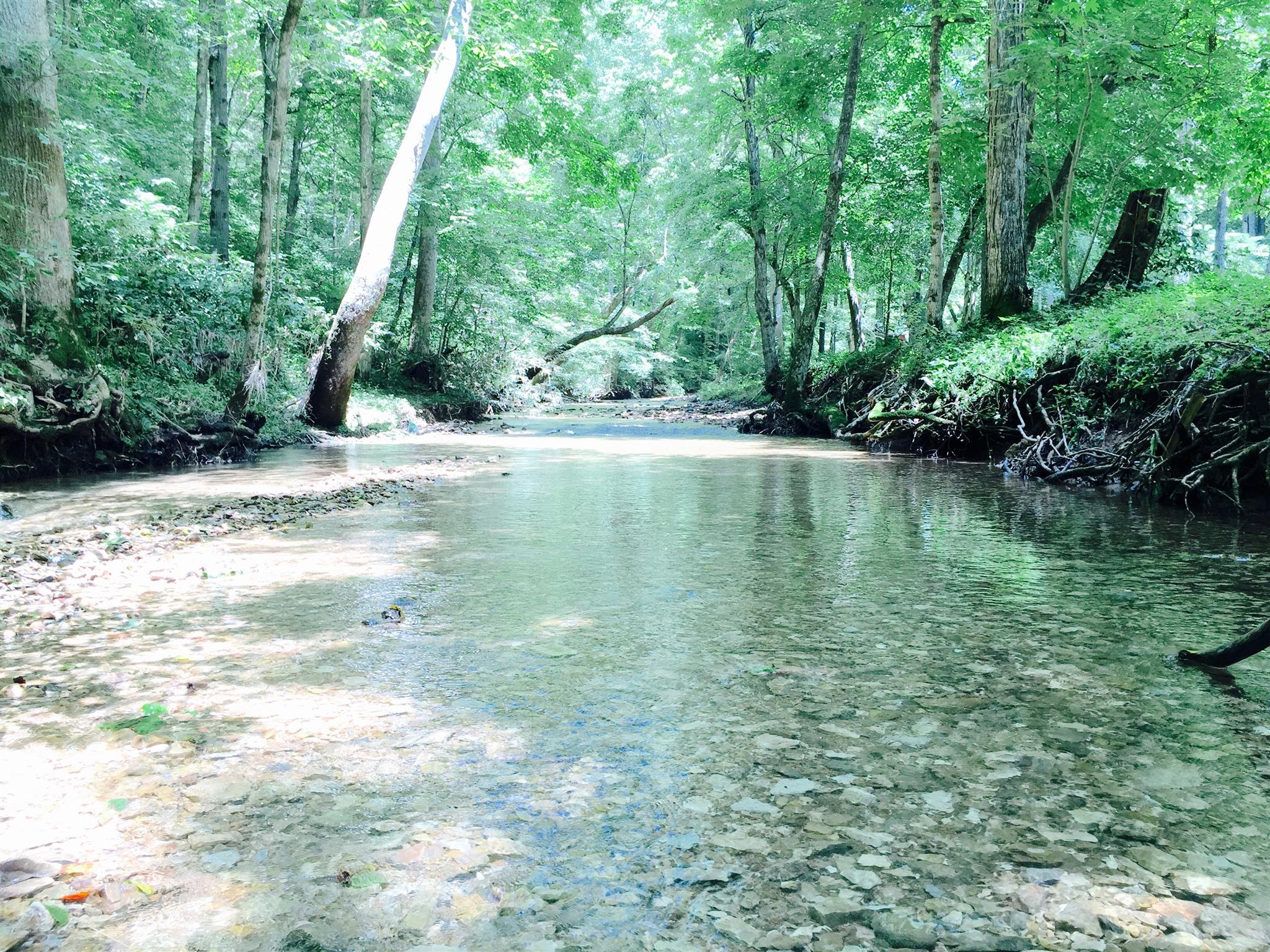 111 Moore Ct, Pleasant View, TN 37146