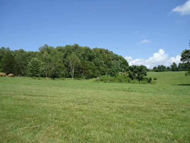 Image of  for Sale near Red Boiling Springs, Tennessee, in Clay County: 27.68 acres