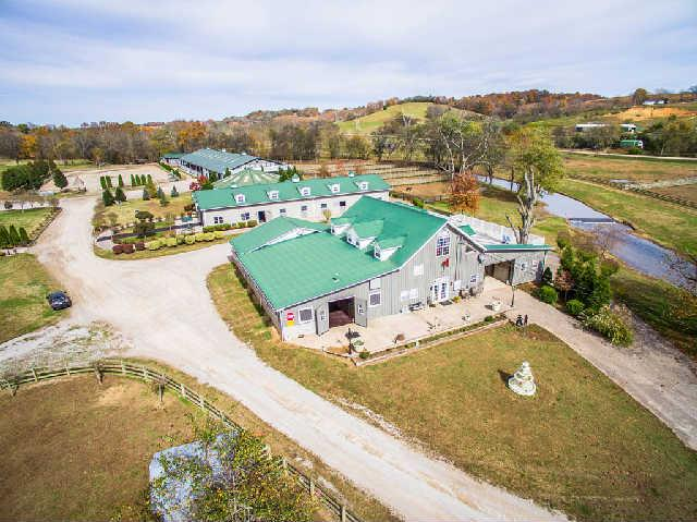Image of  for Sale near Lynnville, Tennessee, in Giles County: 99.13 acres