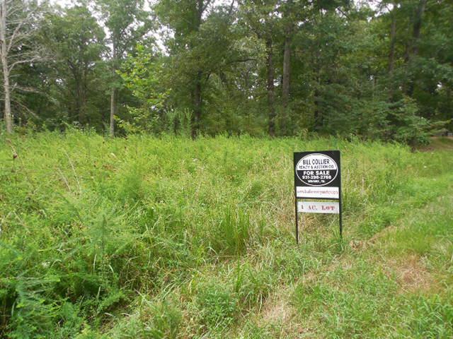 1674 Little Hurricane Creek Rd, Mc Ewen, TN 37101