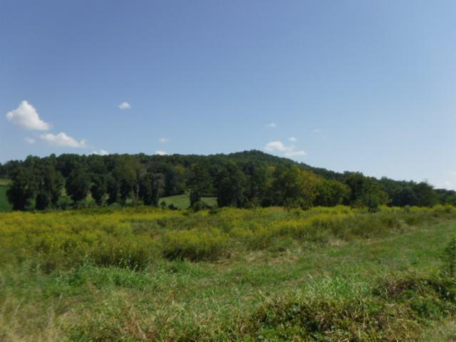 Image of  for Sale near Sparta, Tennessee, in White County: 12.37 acres