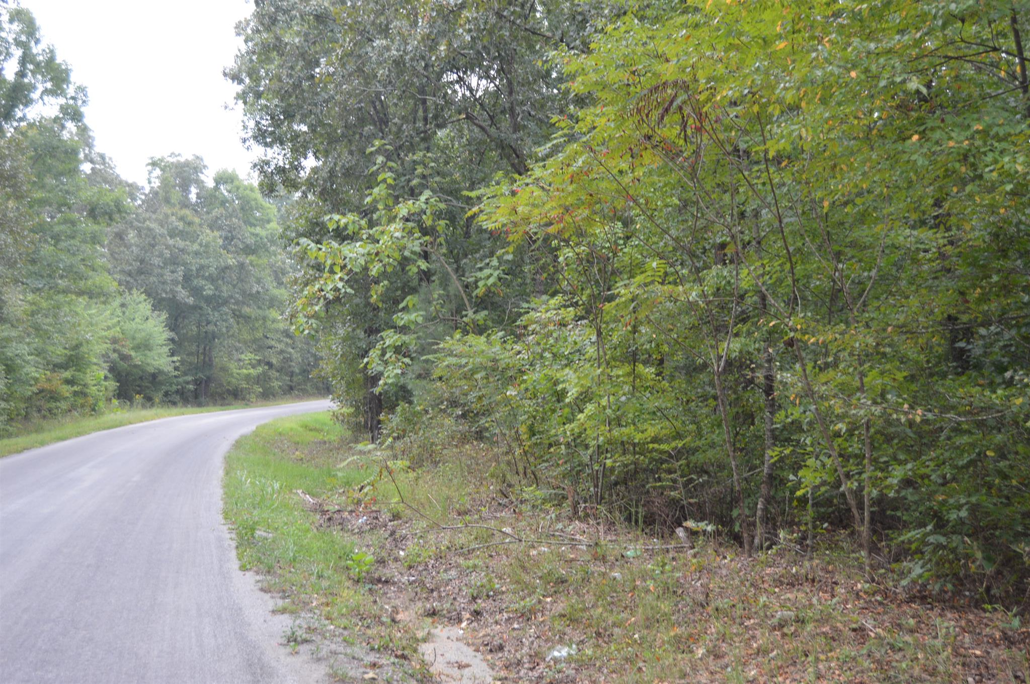 Image of  for Sale near Lawrenceburg, Tennessee, in Lawrence County: 25 acres