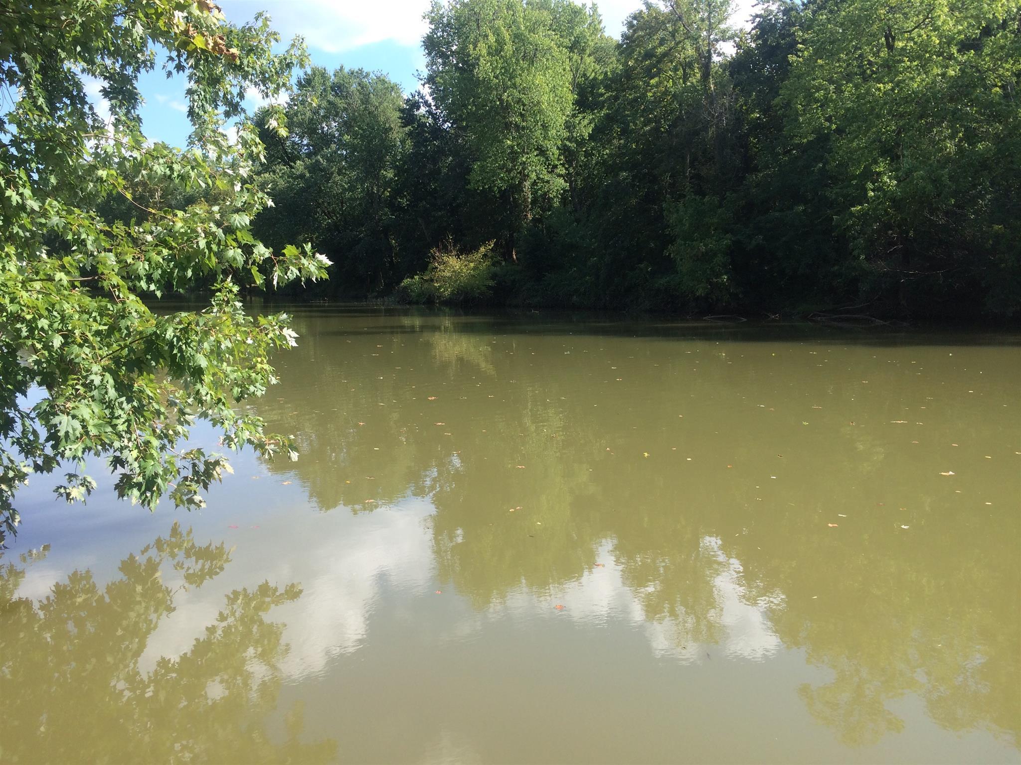 1603 River Rd, Chapel Hill, TN 37034