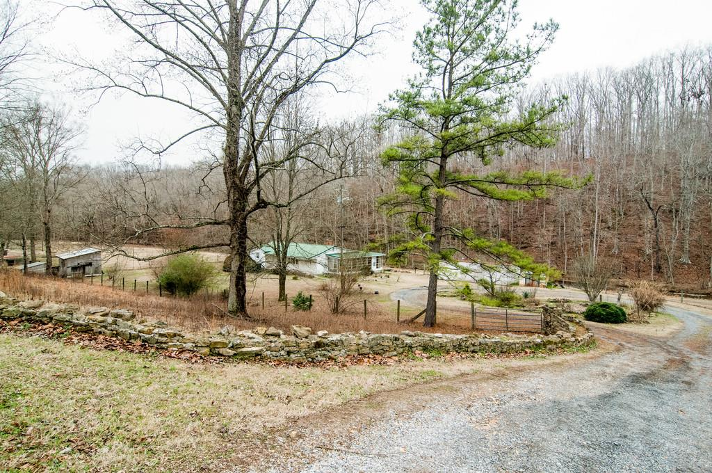 Photo of 8188 Shoals Branch Rd  Primm Springs  TN